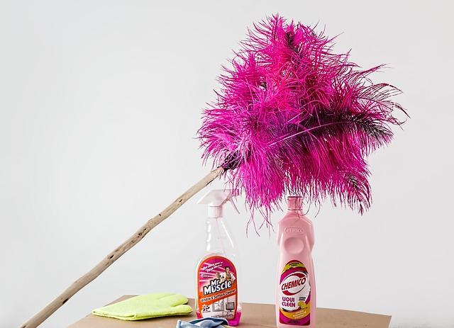 domáce práce, prach.jpg